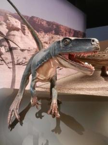 Greeted by a fierce Herrarasaurus