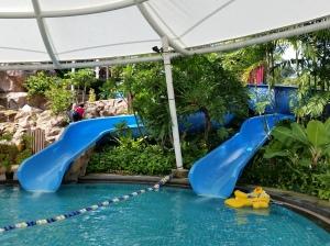 Slides no.2 and 3