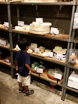 In the cheese room