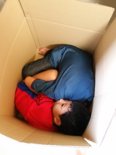 How many boys fit into a box? The boys packing themselves away before we moved